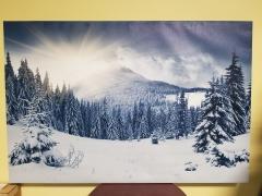 Winter Landscape Canvas