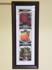 Card Seed Co. Framed Art