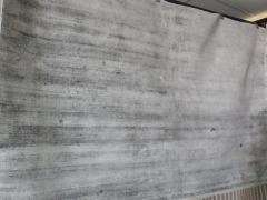 NEW Tabitha Area Rug 8'x 10'